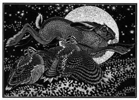 Nocturnal Encounters: Hare And Woodcocks